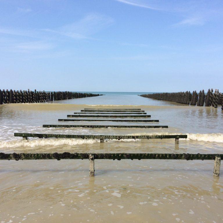 ferme à moules baie de somme plage gîte marquenterre