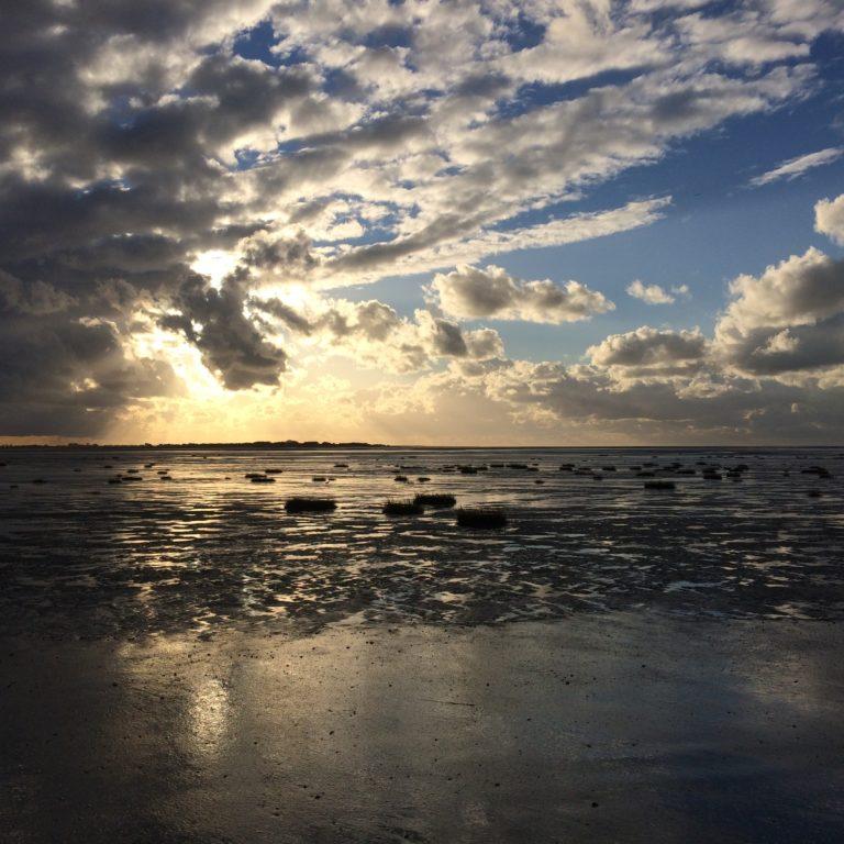 plage coucher soleil baie de somme plage gîte marquenterre